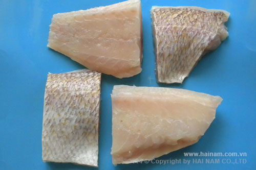 King snapper portion skin-on<br />Latin name: Pristipomoides spp<br />Size: 100-120gr,1 20-140gr, 170-230gr