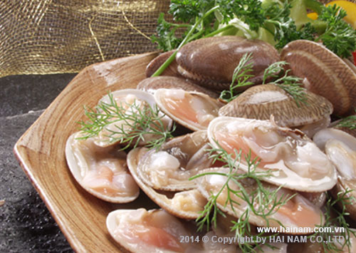 Raw Half Shell Clam<br />Latin name: Paphia undulata<br />Size: 5 Cm Up